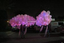 Işıklı Uçan Balon