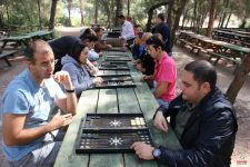 Piknik Organizasyon
